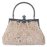Bagood Damen Vintage Clutches Geldbörsen Abendtaschen Handtasche Schultertasche Seed Perlen Pailletten Blume für Hochzeit Braut Prom Party Champagner